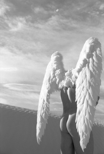 Winged Angel in White