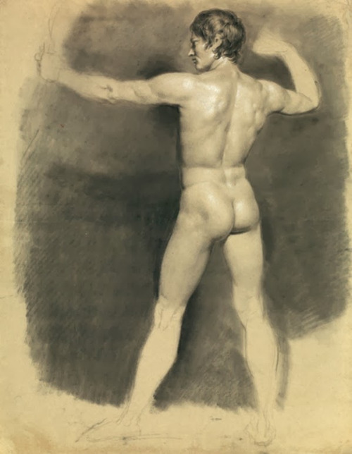 Male Nude Academic Study