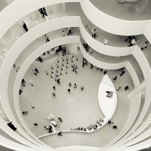 Top of the Guggenheim