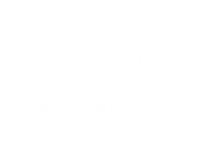 Anything Box Graphic