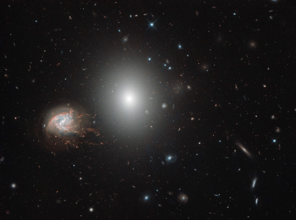 Knots and bursts Coma Cluster Hubble Space Telescope NASA